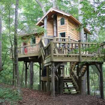 Dale Earnhardt Jr Treehouse Featured On Animal Planet Nascar