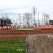 Sharon Speedway Ohio Racetrack 2869