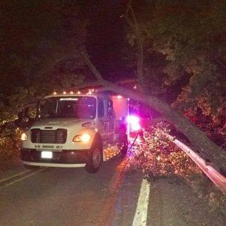 Kenny Wallace Hauler Fallen Tree