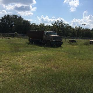 Albany GA Dirt Track