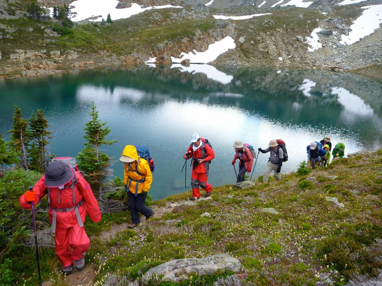 Golden Alpine Hiking