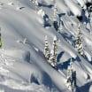 Golden Alpine Holidays - British Columbia Canada Ski Mountain