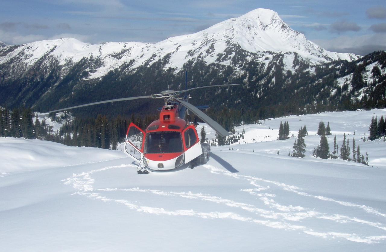 Golden Alpine Holidays - Helicopter