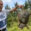 Ward Burton and a Turtle