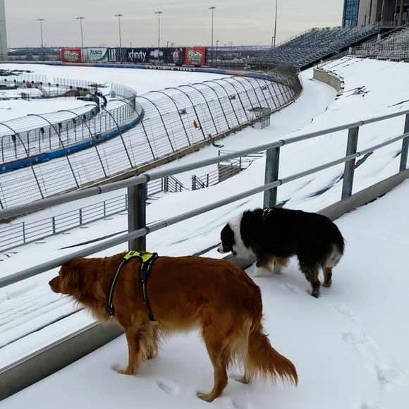 Texas Motor Speedway - Snow