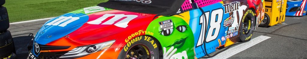 NASCAR pink window nets bring large sum for charity